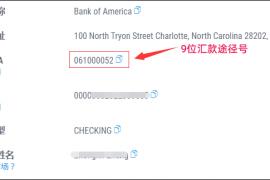 注册亚马逊店铺时,需要9位汇款途径号码在哪申请?