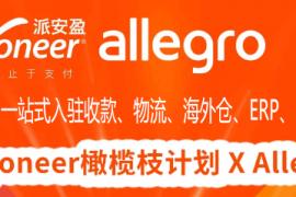 波兰Allegro电商平台,Allegro卖家常见问题,如何入驻?