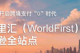 Amazon亚马逊卖家设置World First(WF卡)收款教程!